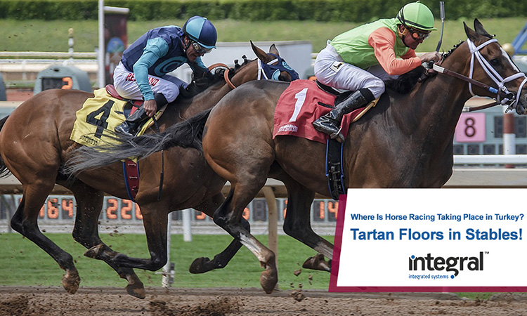 Where Is Horse Racing Taking Place in Turkey? Tartan Floors in Stables!