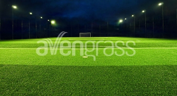 Artificial Grass Models for Sports Fields