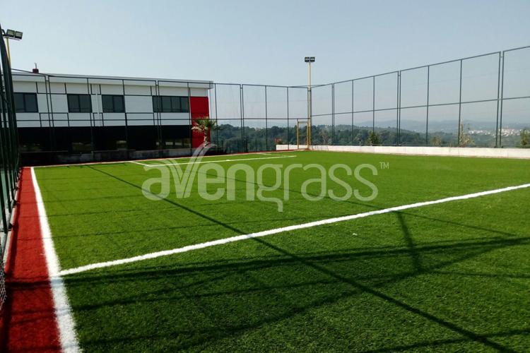 Exclusive artificial grass