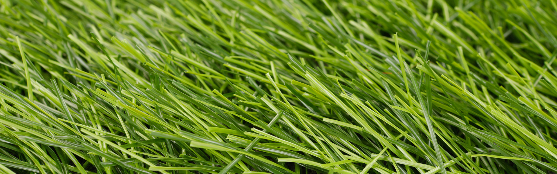 For Cost of PowerGrass Artificial Grass Production